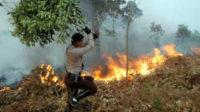 Kebakaran hutan. FOTO/INDHIE